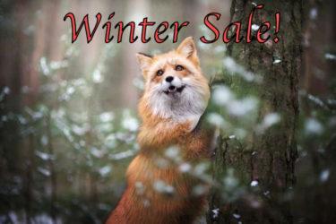 Winter Saleのお知らせ!